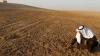 Syrian farmer feeling his dry field in 2010