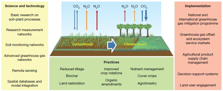 carbon farming infographic